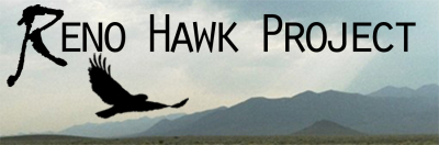 Reno Hawk Project