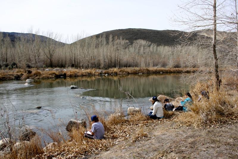 Beaver habitat: students observe the Truckee River at McCarran Ranch. Mar 10, 2015.