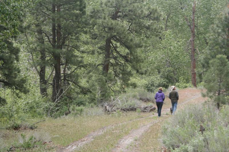 Hiking the Tahoe-Pyramid bikeway near Floriston, CA. May 18, 2015.