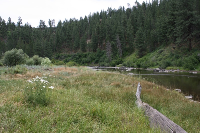 The Truckee River east of Prosser Creek. July 12, 2015.