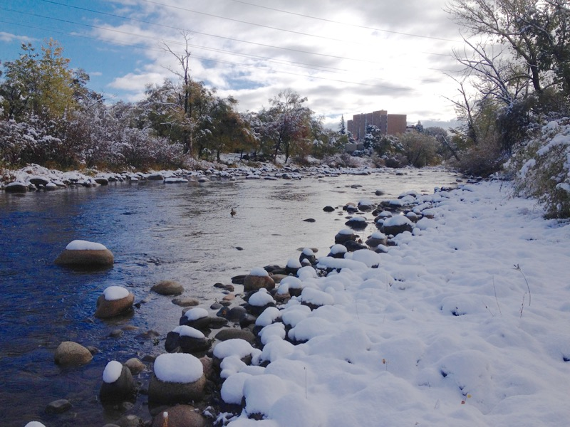 Snow! Idlewild Park, Nov 10, 2015.