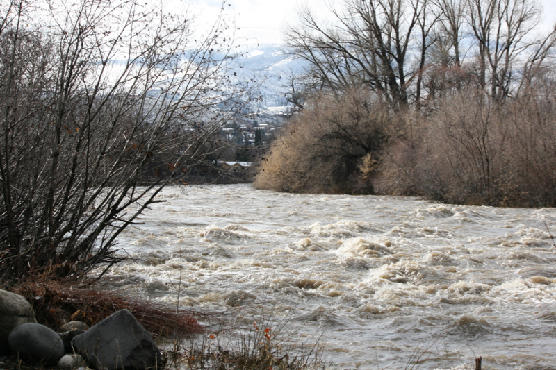 The Truckee River in Reno flowing at approximately 3000 cfs. January 30, 2016.