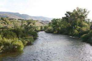Truckee River in Dorostkar Park, May 29, 2016.