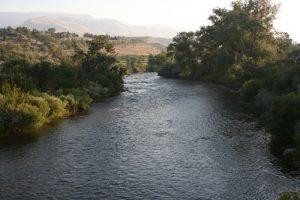 Truckee River, Dorostkar Park. June 2016.